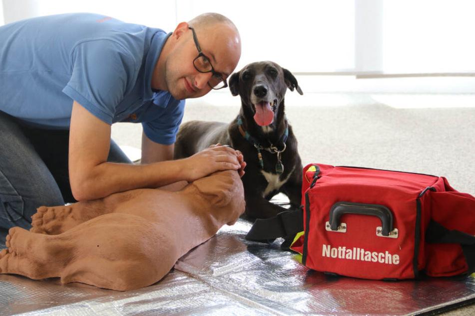 Rettungssanitäter Mathias Körner (41) leitet den Erste-Hilfe-Kurs, übt mit einem Dummy. Echte Hunde dürfen nicht mitgebracht werden.