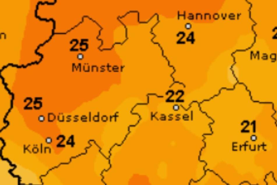 Bis zu 25 Grad erwarten uns am Wochenende.