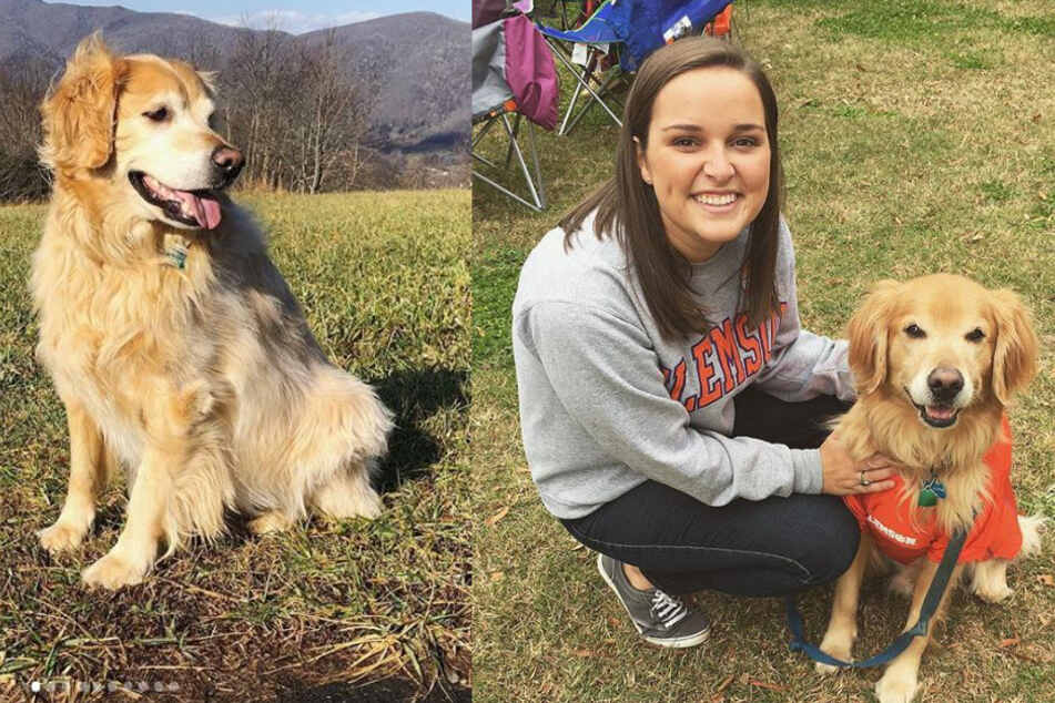 Woman's heartwarming obituary for her dog goes viral
