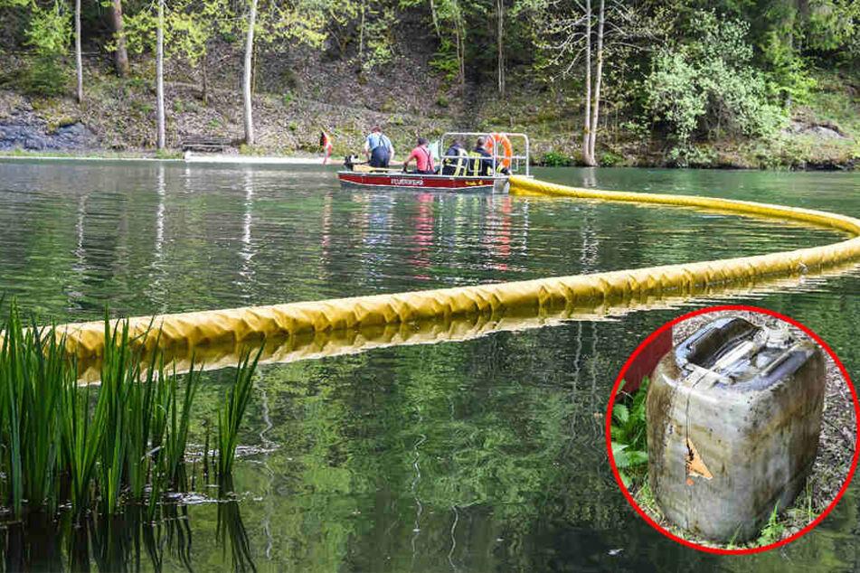 Nicht zu fassen! Ölfässer in Waldteich entsorgt