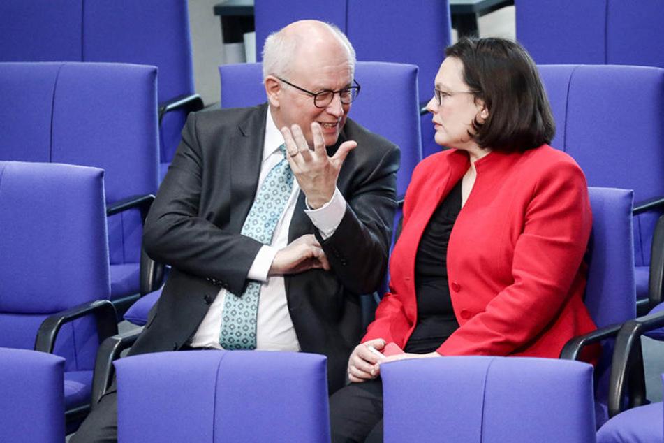 Andrea Nahles (SPD) und Volker Kauder (CDU) werden künftig dank GroKo enger zusammenarbeiten.