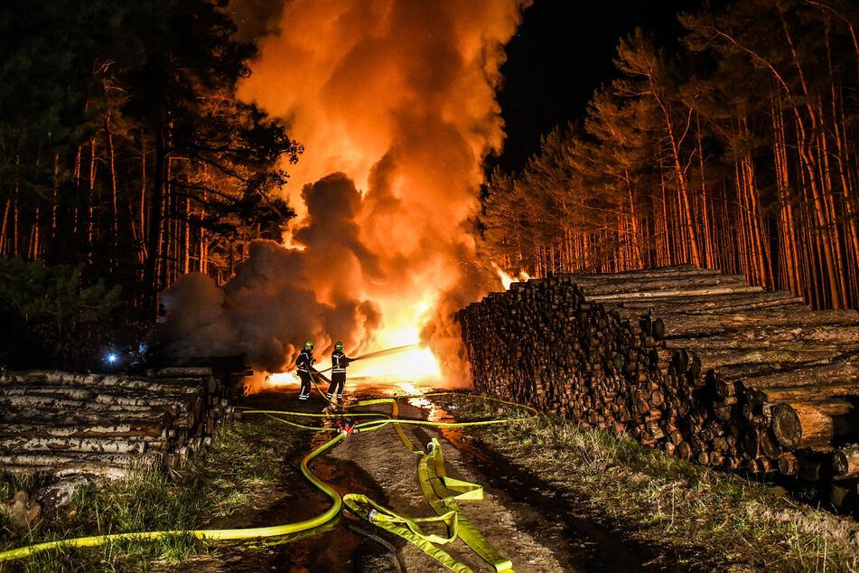 Im brandenburgischen Wandlitz ist in der vergangenen Nacht ein Feuer ausgebrochen.