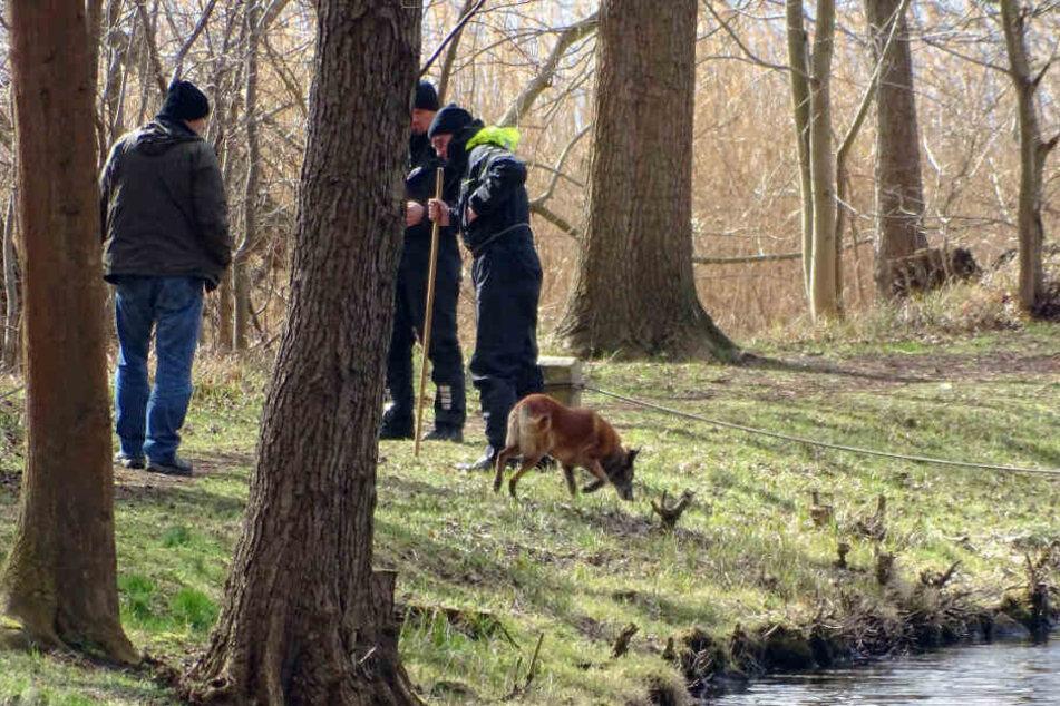 Polizisten setzten ihre Suche auf dem Wolziger See fort.