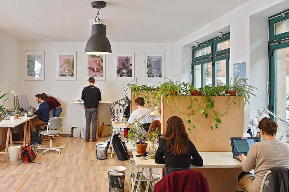 Das Start-up an der Mohnstraße in Pieschen will nachhaltige Produkte ohne Plastik-Müll auf den Markt bringen.