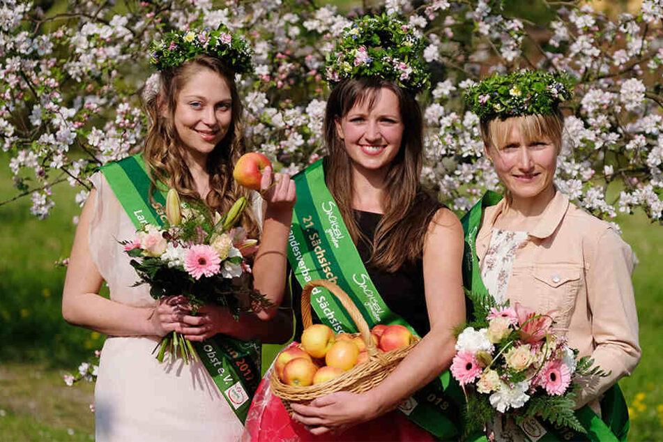 Vertreten nun ein Jahr lang den Obstbau Sachsens und Sachsen-Anhalts (v. l. n. r.): Prinzessin Sarah, Laura I. und Prinzessin Anna.