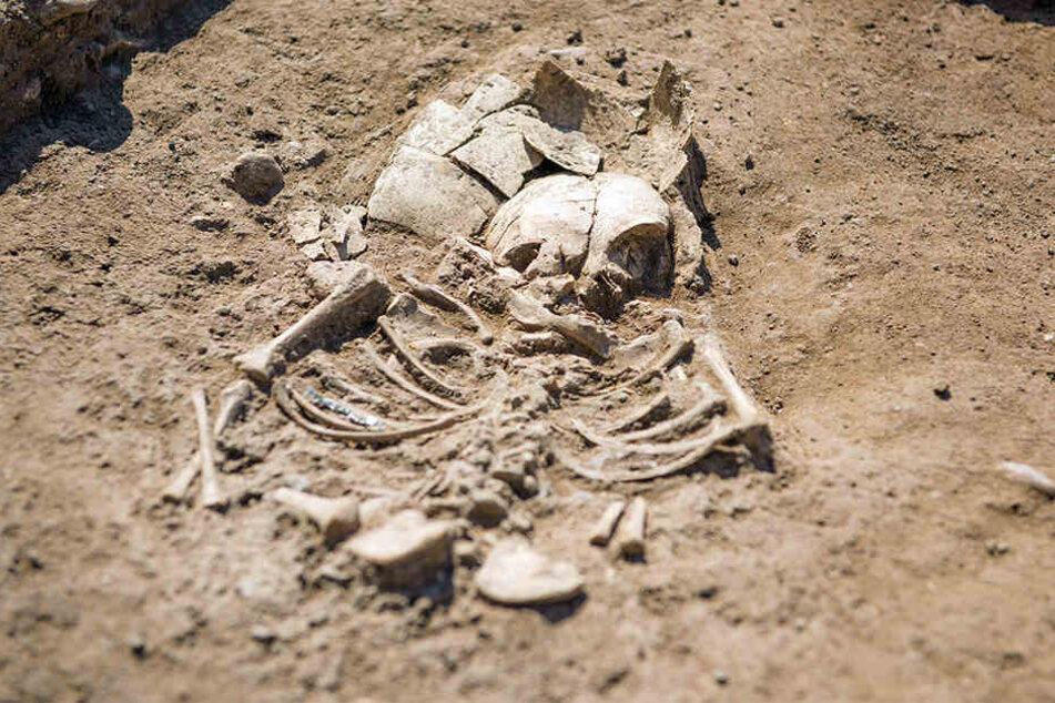 Bei dem Leichnam handelt es sich um eine Frau, die 45 Jahre alt wurde. (Symbolbild)