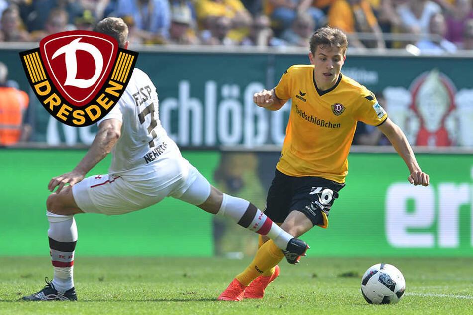 Schon beim Dresden Cup überzeugte Niklas Hauptmann. Nun wählten ihn die Dynamo-Fans zum Spieler des Monats August.