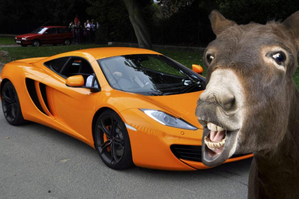 Esel Titus kam, sah und siegte. Sein Opfer: ein orangefarbener McLaren. (Symbolbild)