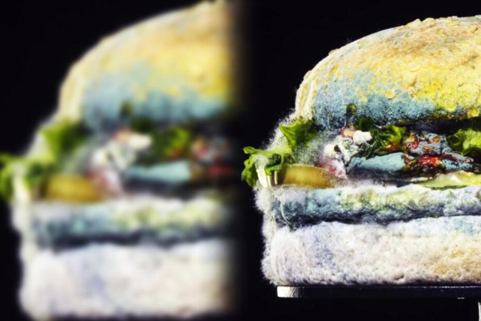 Burger King macht jetzt mit Gammelfleisch Werbung: Das steckt dahinter!