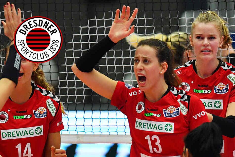 Zweiter Saisonsieg! Dresdner SC schickt Erfurt mit 3:0 nach Hause