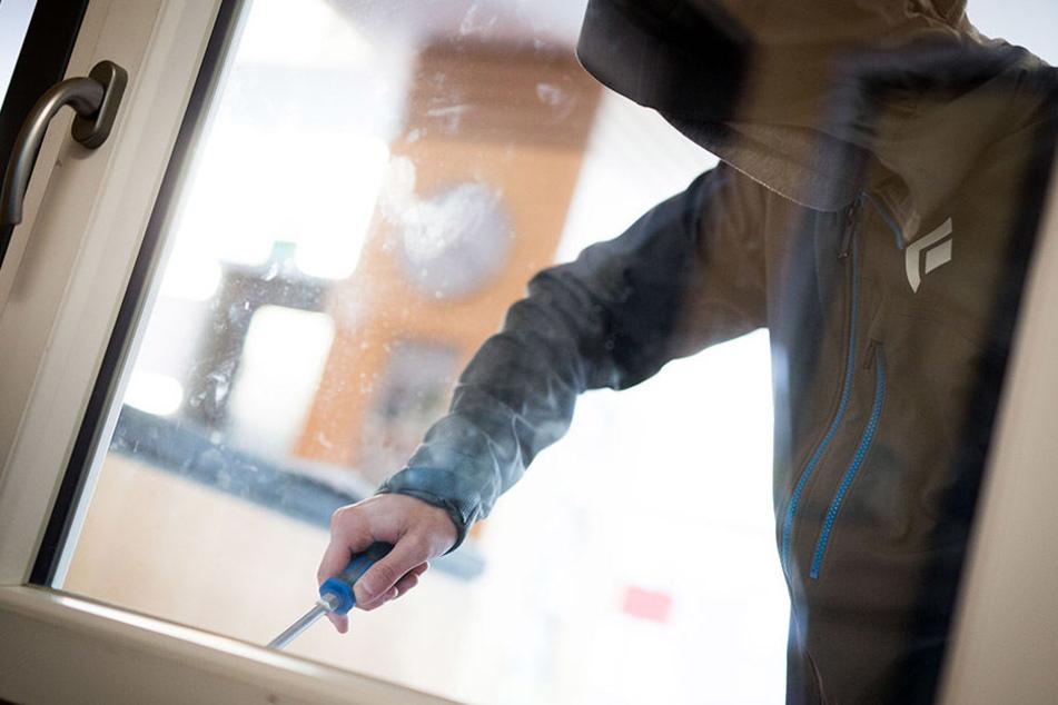 Die Polizei hat einer mutmaßlichen Einbrecherbande das Handwerk gelegt und damit wohl gleich mehrere Einbrüche aufgeklärt (Symbolbild).