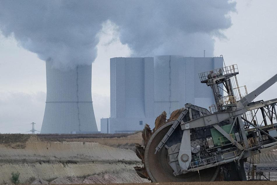 Derzeit werden rund 60 Prozent des Leipziger Fernwärmebedarfs vom Kraftwerk Lippendorf gedeckt.