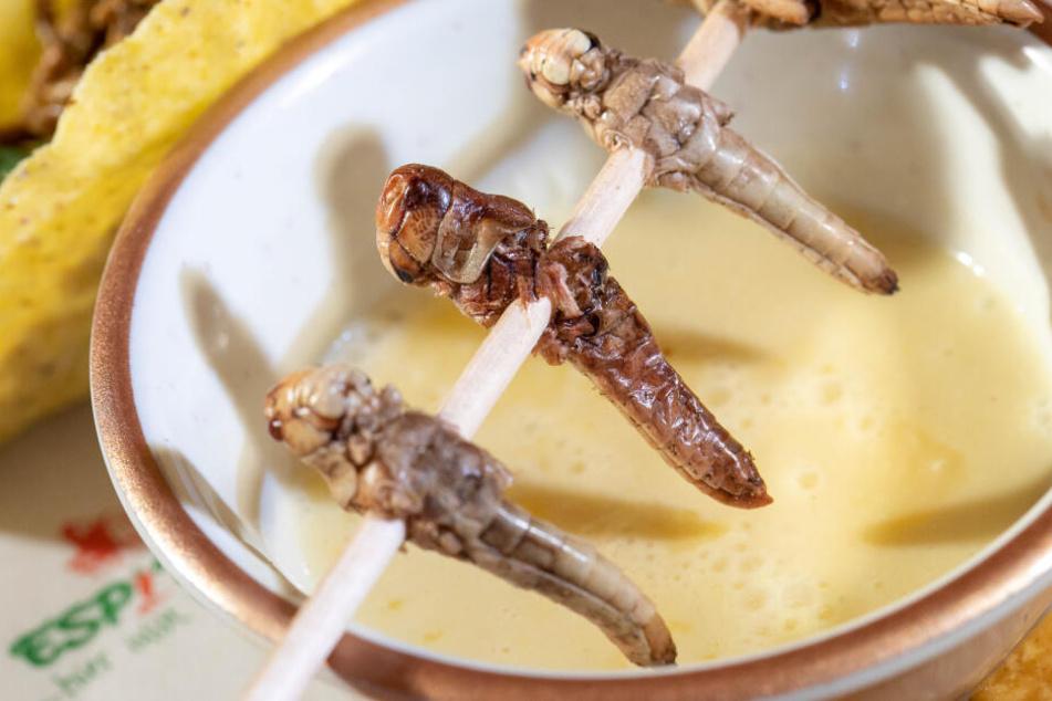 Die Heuschrecken werden kurz in Öl angebraten und dann mit einer Maiscremesuppe serviert.
