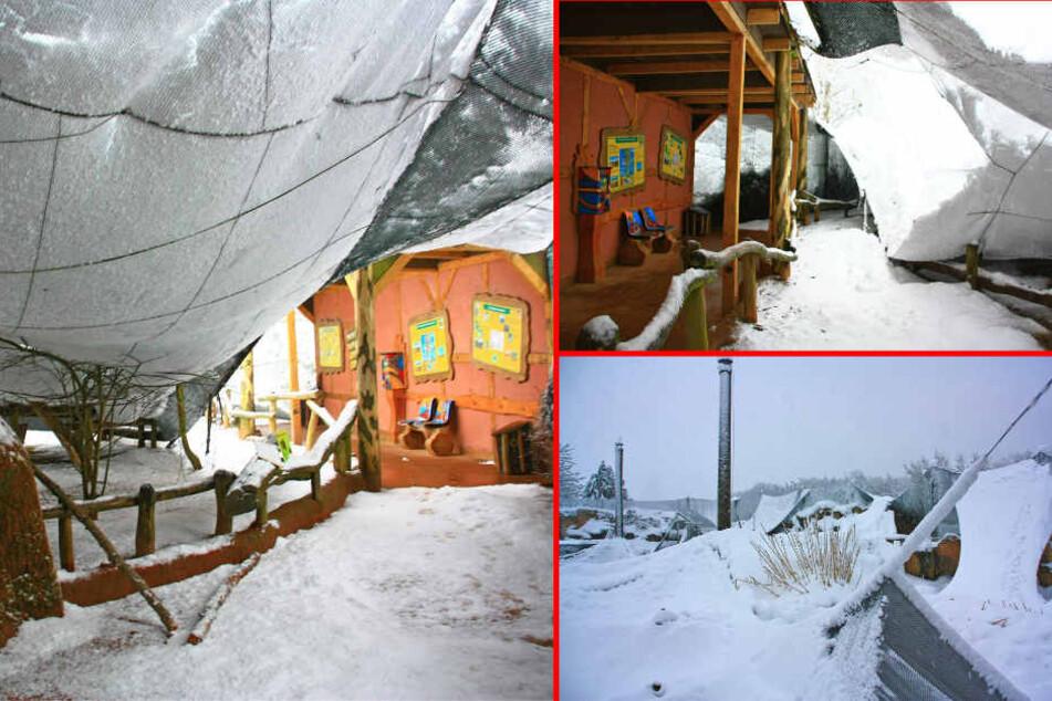 Die Flugvolieren brachen unter den gewaltigen Schneemassen zusammen. (Bildmontage)