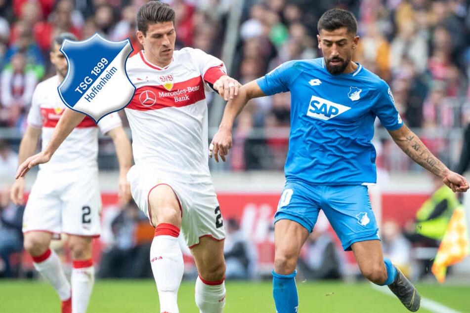 """Hoffenheims Demirbay nach Unentschieden gegen VfB: """"Momentan kein Topteam"""""""