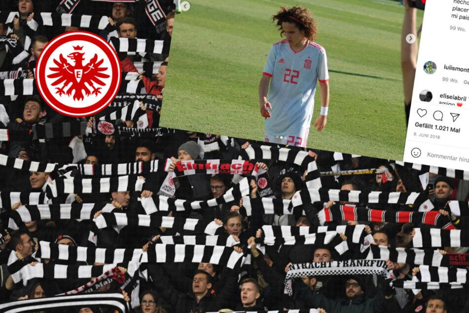 Sticht die Eintracht den FC Bayern, den BVB und Barca im Kampf um Jahrhunderttalent aus?