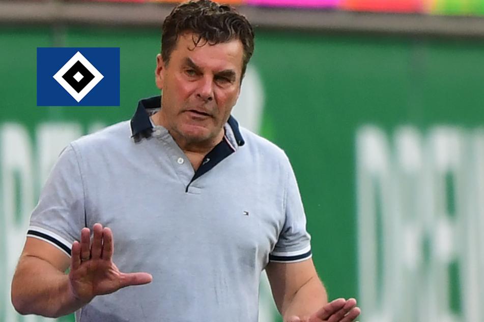 Spieler gesperrt und verletzt: HSV-Coach muss Team umbauen