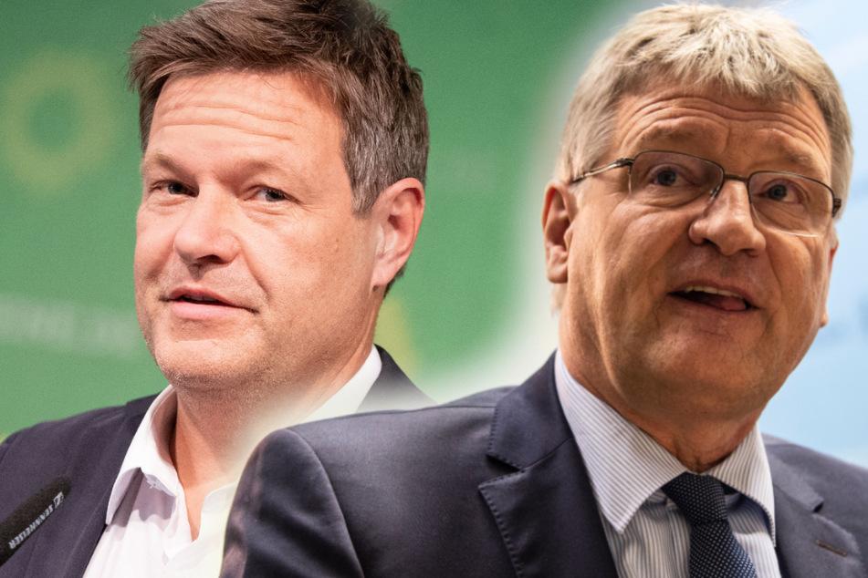 """""""Vaterlandsliebe zum Kotzen"""": AfD-Meuthen geht auf Robert Habeck los"""