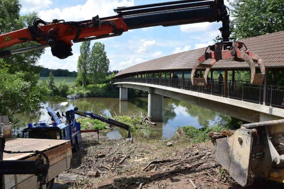 An einem Brückenpfeiler machten die Ermittler den grausigen Fund.