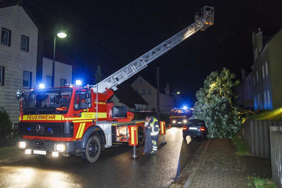 In Lugau wurde ein Auto durch einen abgeknickten Baum beschädigt.