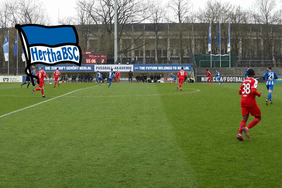 Ibisevic-Treffer reicht nicht: Hertha verliert gegen Kiel