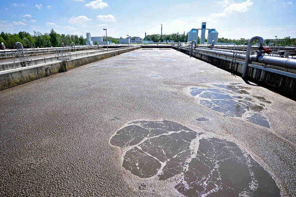 In den Abwässern, die in der Kläranlage Heinersdorf gereinigt werden, finden  sich viele Arzneimittelrückstände.