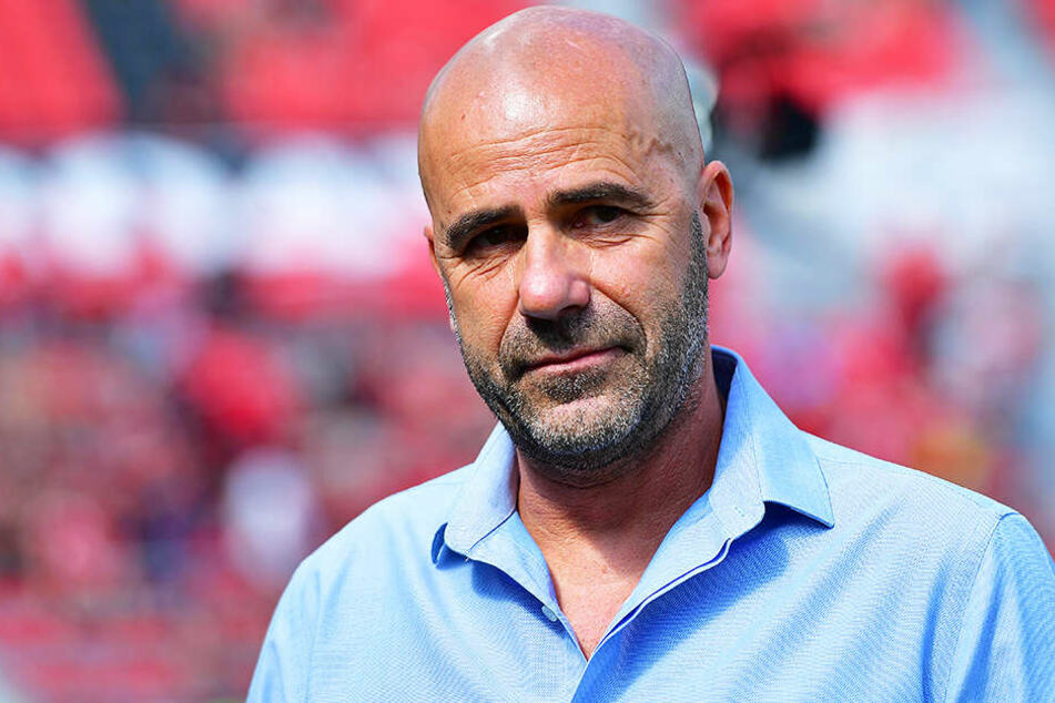 Bayer Leverkusens Coach Peter Bosz glaubt an einen Sieg der DFB-Auswahl im Duell mit seinem Heimatland.