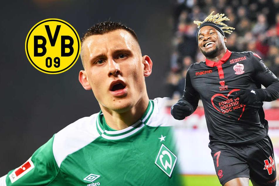 Verstärkungen: Diese Spieler sollen im BVB-Fokus sein!