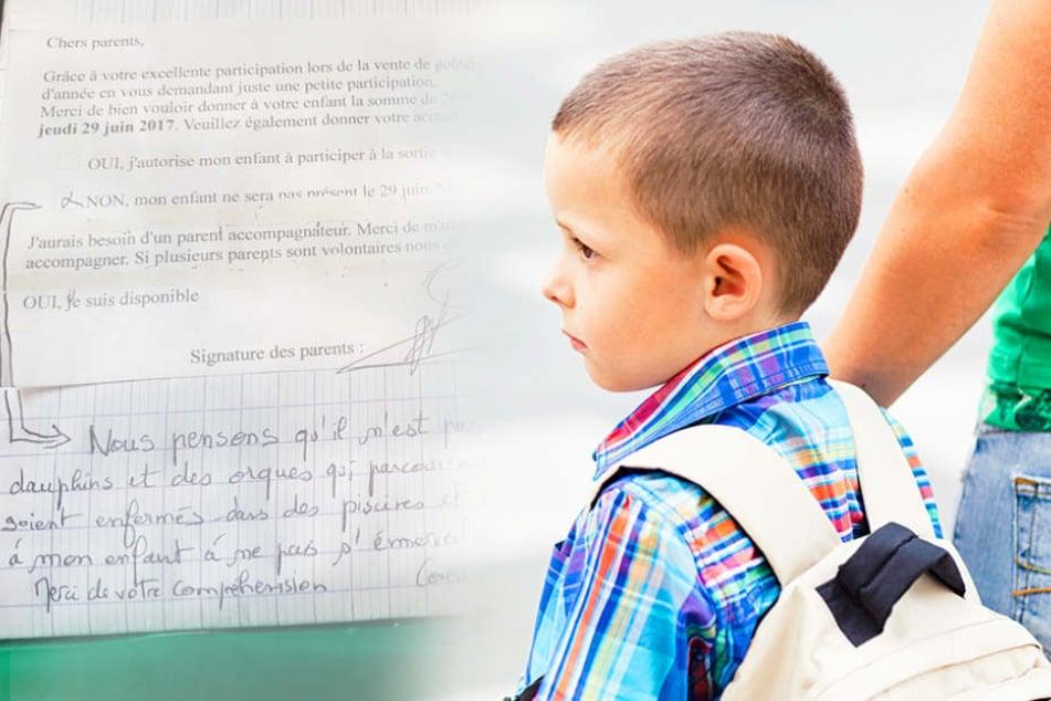 Junge darf nicht zu Schulausflug: Mutter schreibt beeindruckende Begründung