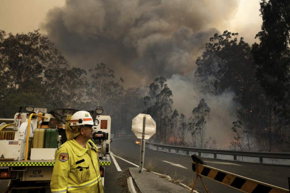 Eine Crew des Nationalparks zieht sich zu einer Straßensperre zurück, während das Hillville-Feuer entlang des Bullocky Way brennt.
