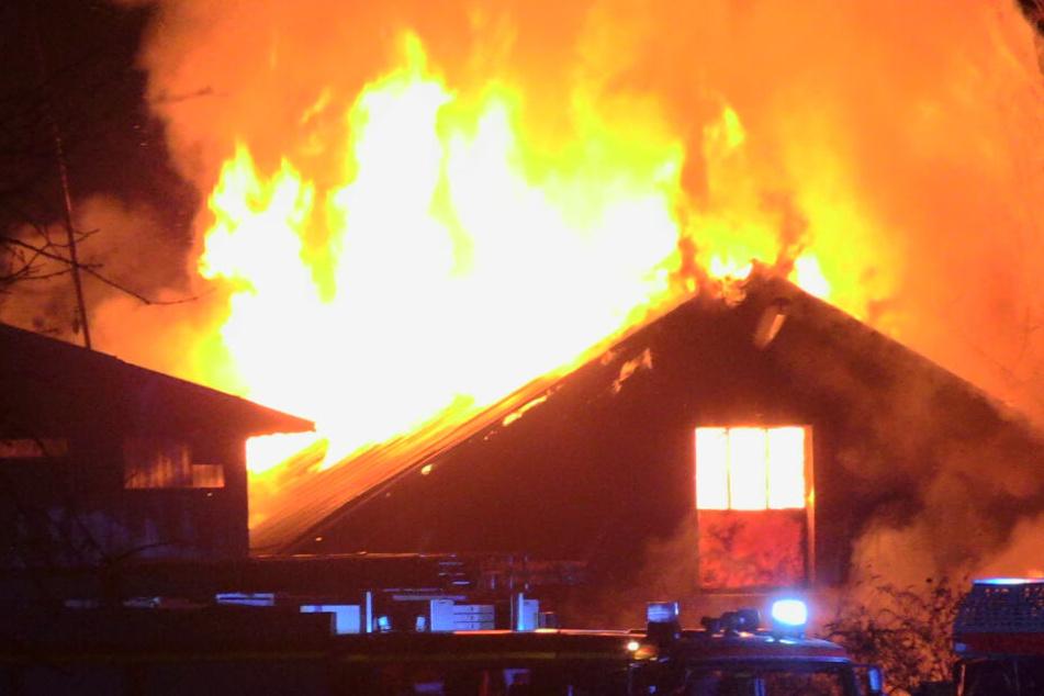 Als die Feuerwehr eintraf, stand die Halle schon komplett in Flammen.