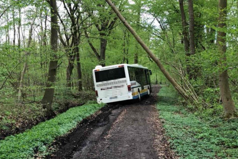 Navi zeigt falschen Weg Hier steckt ein Linienbus fest