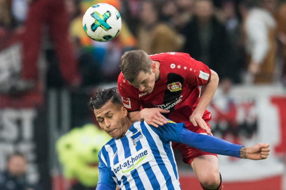 Leverkusens Sven Bender (oben) und Davie Selke von Berlin im Zweikampf.
