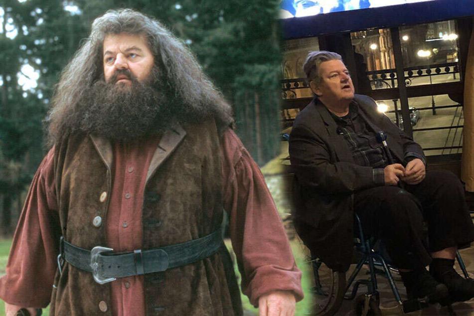 """Sorge um """"Hagrid"""": Harry-Potter-Schauspieler im Rollstuhl"""