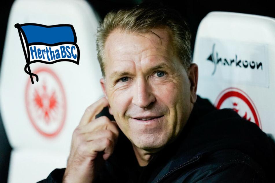 Bleibt Andreas Köpke doch länger bei Hertha?