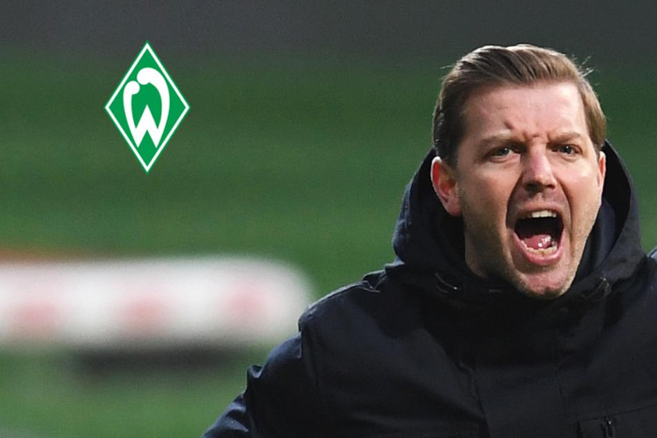 """Werder-Coach Kohfeldt nach Pleite gegen Union erzürnt: """"Frechheit"""", Fans: """"Totalversagen""""!"""