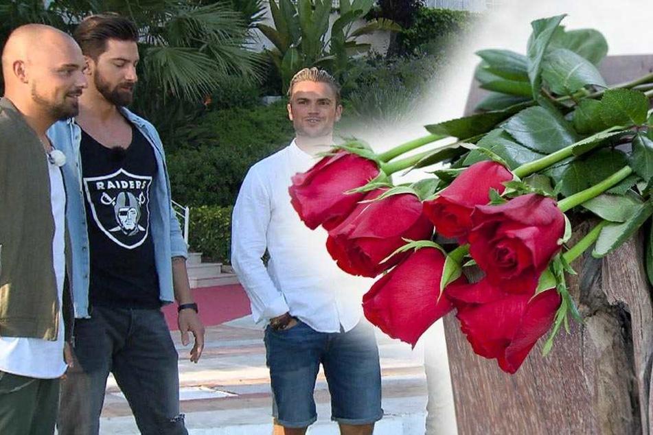 Niklas, Sebastian und Johannes (v.l.) bekmane bei der diesjährigen Bachelorette-Staffel nicht die letzte Rose. Sie könnten also ihr Glück in der neuen RTL-Datingshow finden.
