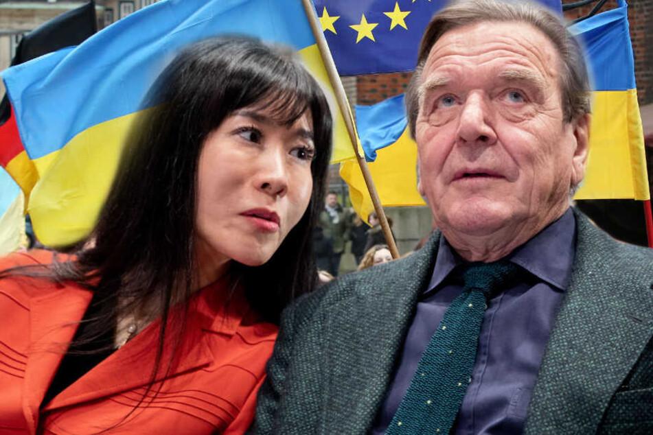 Der Name von Gerhard Schröder ist auf einer Liste der Staatsfeinde der Ukraine aufgetaucht. (Bildmontage)