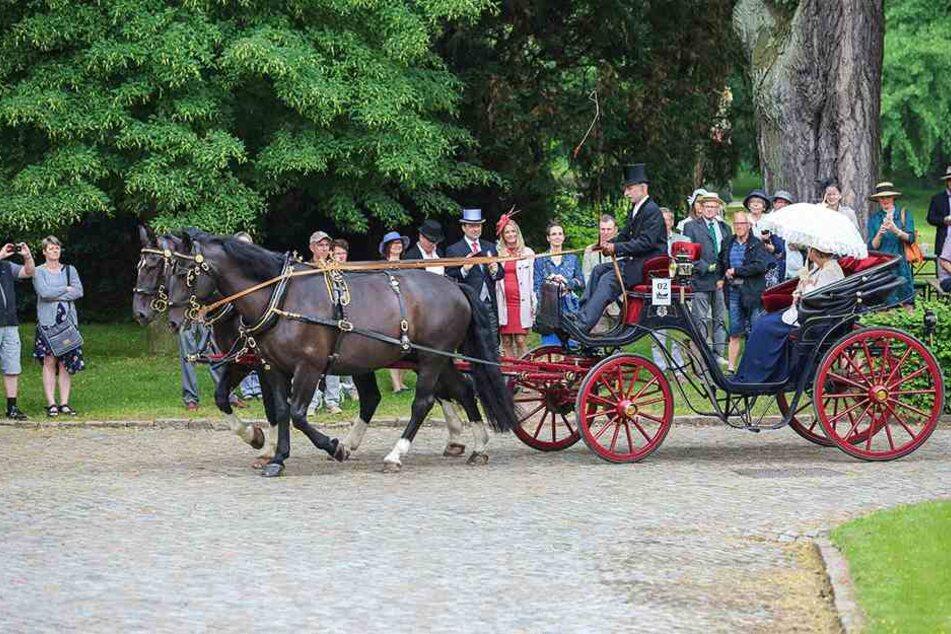 Selbst fein herausgeputzt, applaudierte das Publikum den edlen Gespannen am Start der Ausfahrt auf Schloss Proschwitz.