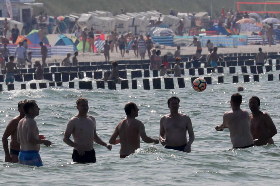 Badegäste in der Ostsee müssen wegen Quallen aufpassen (Symbolbild).