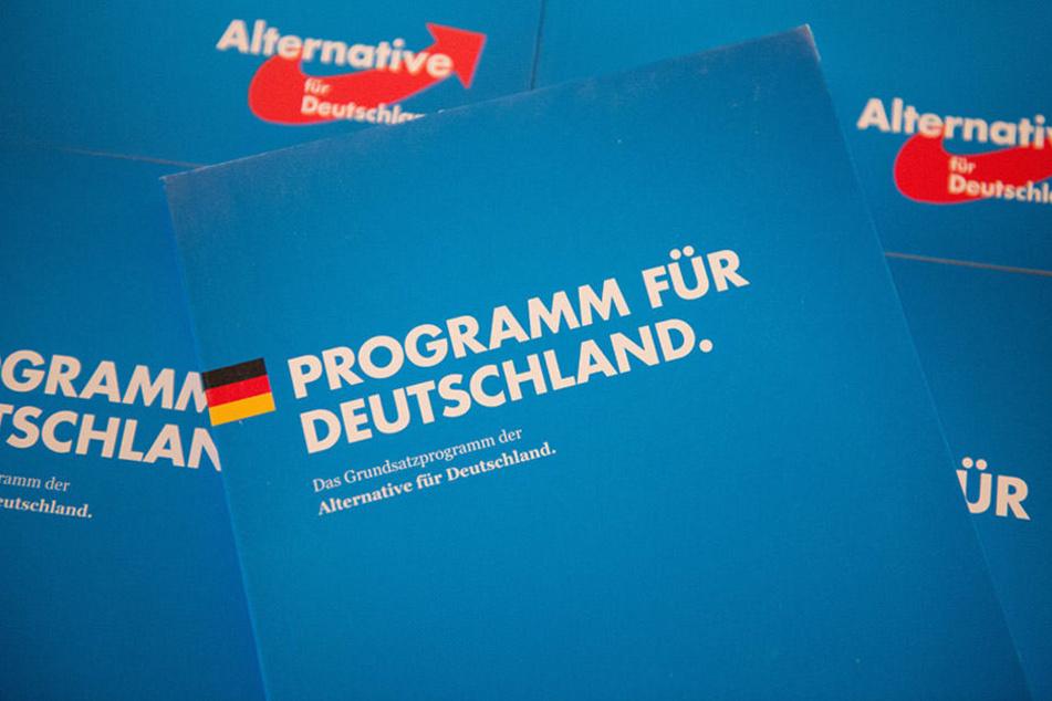 Das Grundsatzprogramm der AfD: Alternativ ist der digitale Verkaufsschlager der Partei allemal, dennoch bleibt der Weg fragwürdig.