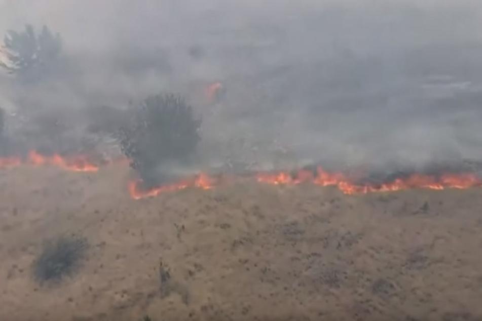 Das Feuer breitete sich schnell aus.