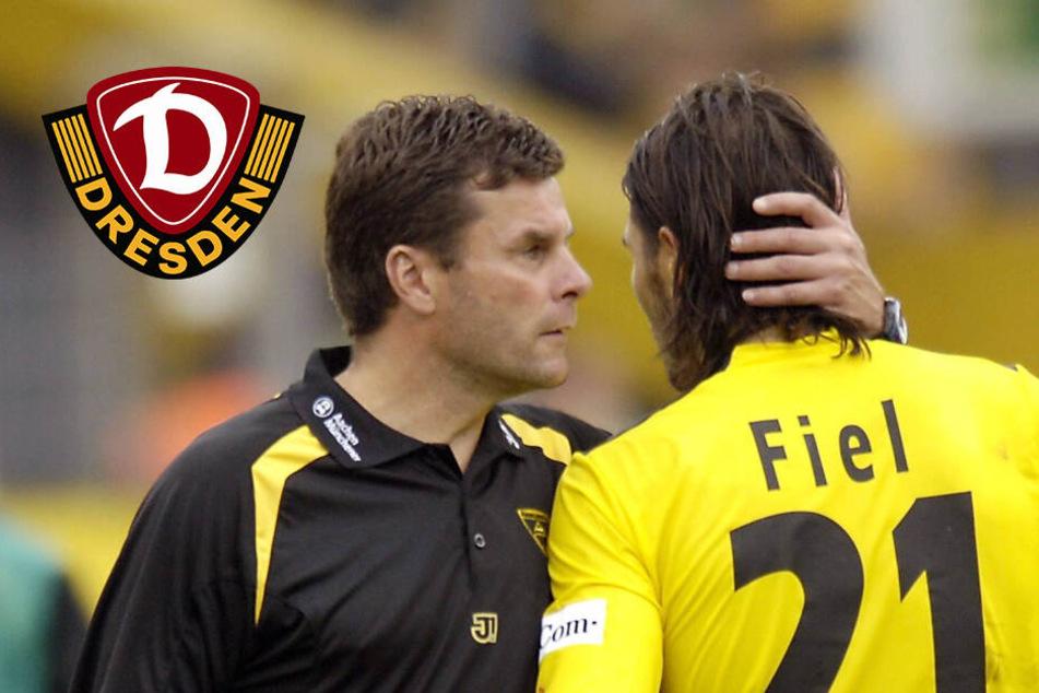 "Dynamo-Coach Fiel: ""Hecking ist mein Überidol"""