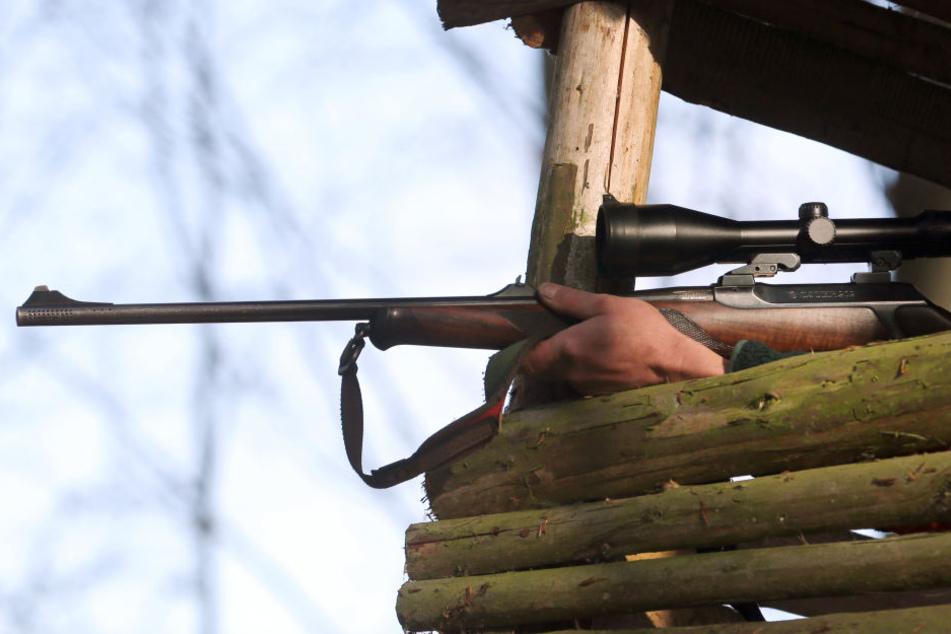 Hat ein Jäger die 86-Jährige erschossen? (Symbolbild)