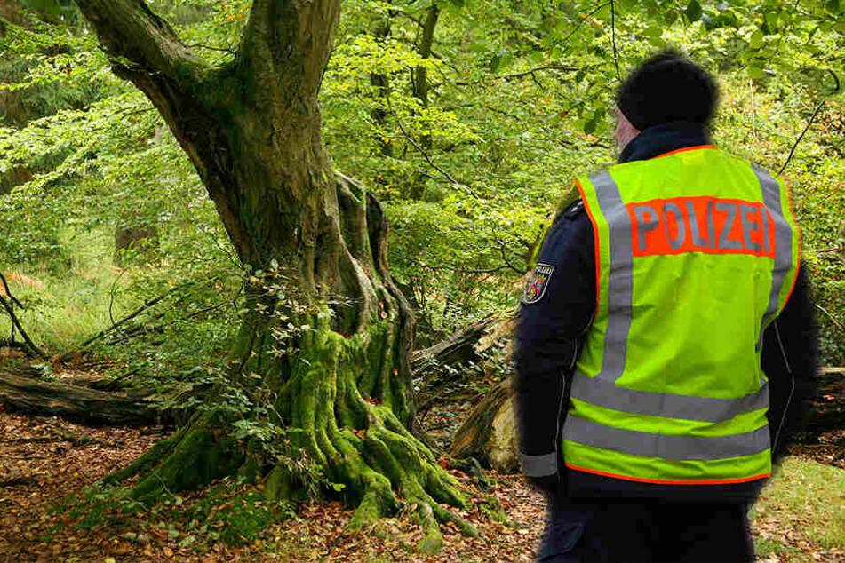 Ein Hobby-Archäologe machte den Bombenfund in einem kleinen Wald in Taucha bei Leipzig. (Symbolbild)