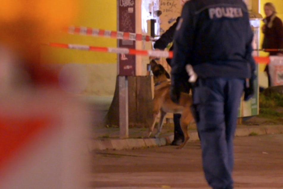 Ein Spürhund der Polizei kam ebenfalls in dem abgesperrten Areal zum Einsatz.