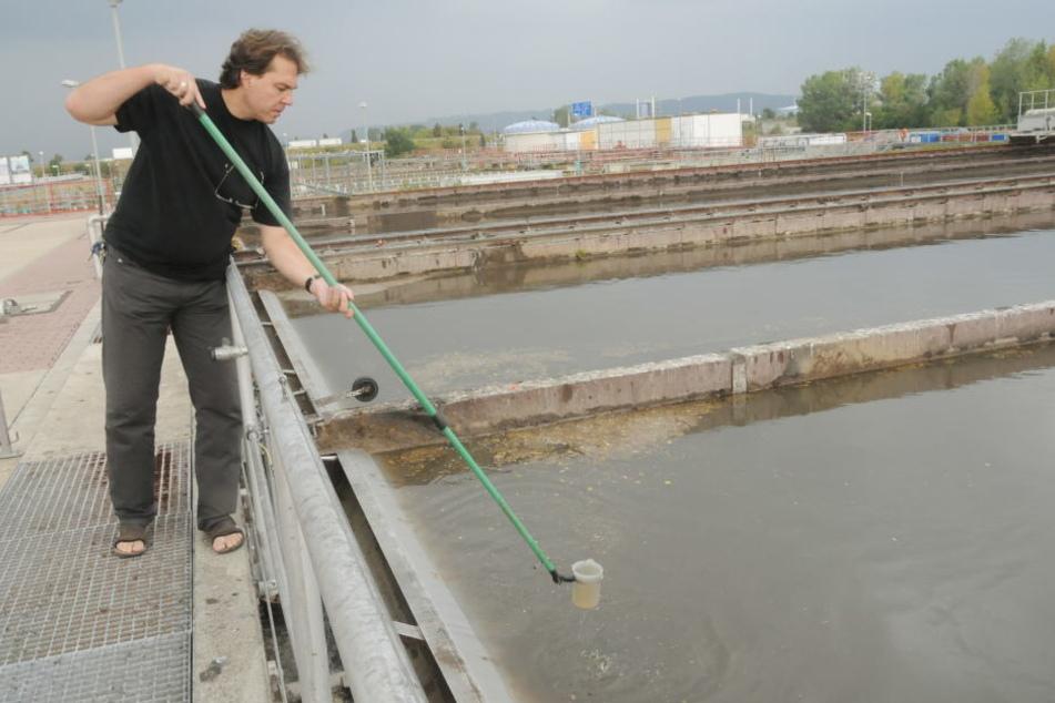 Torsten Fiedler (51) von der Stadtentwässerung nimmt an einem Außenbecken  eine Wasserprobe.