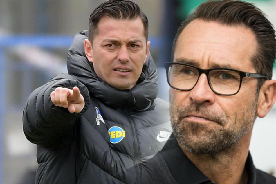 Manager Michael Preetz bezeichnete Ante Covic als beste Lösung für Hertha BSC. (Bildmontage)