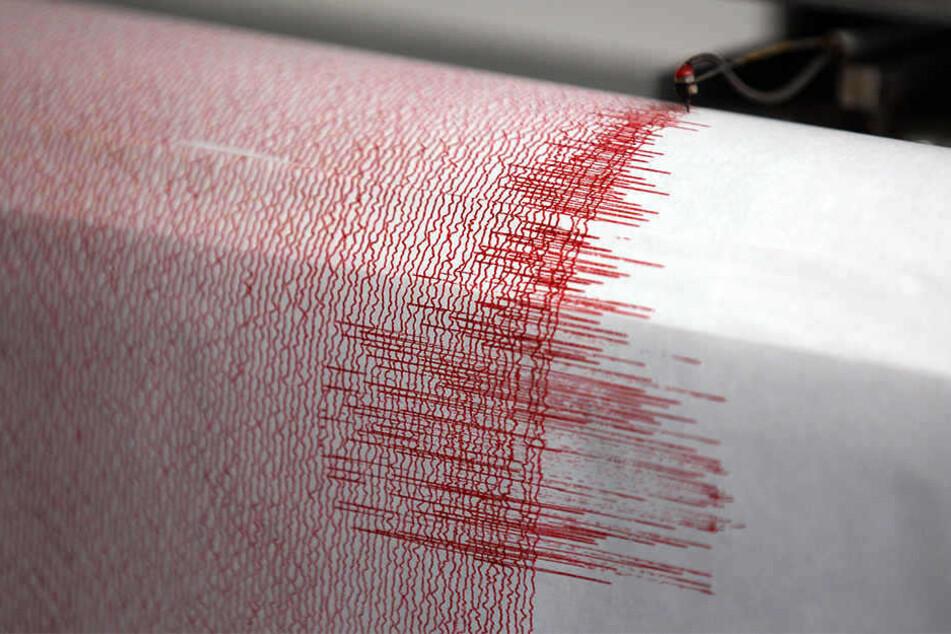 Im Vogtland bebt wieder die Erde: Das heftigste Beben hatte eine Stärke von 2,3.