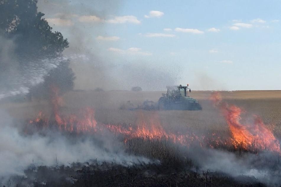 In der Nähe von Ohrsleben in Sachsen-Anhalt sind am Mittwoch über 50 Hektar Land verbrannt.